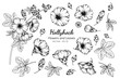 Collection set of hollyhock flower and leaves drawing illustration.