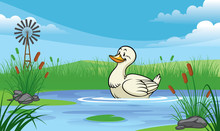 Duck In The Pond With Cartoon Style