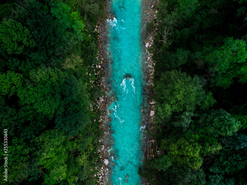 Canvas Prints Forest river Blue river flowing in forest at spring