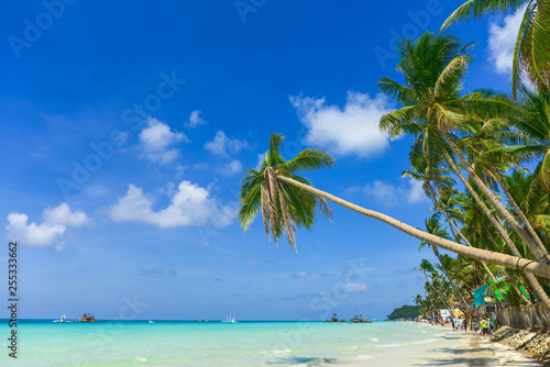 Tropical beach with coconut palm tree, white sand and turquoise sea, Boracay bay
