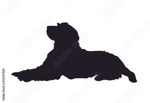 Fotografie, Obraz  dog lies, silhouette, vector