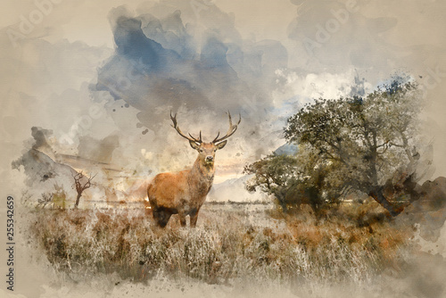 Naklejki Jeleń   powerful-red-deer-stag-in-countryside-landscape-scene-looking-out-into-distance-contemplation-concept-image