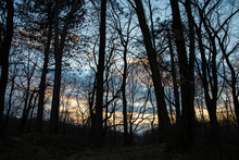 Sunset In The Forest Overlooking The Blazing Sky. Evening In The Forest Overlooking The Blazing Sky. Evening Twilights In The Forest Overlooking The Blazing Sky