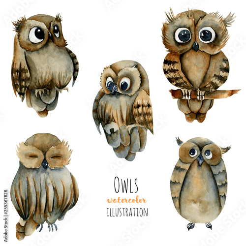 Collection of watercolor cute owls illustration, hand drawn on a white background