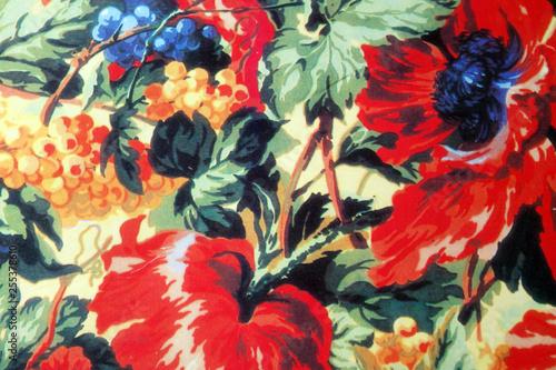 Crédence de cuisine en verre imprimé Fleur blume rot natur weintraube mohn pflanze