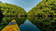 Palau's Rock Islands Offer Fantastic Landscape For Sea Kayaking
