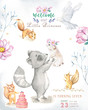 Cute watercolor bohemian baby cartoon roccoon and squirrel animal for kindergarten, woodland deer, fox and owl nursery isolated forest illustration for children. Forest animals.