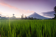 The Mayon Volcano - Active Vol...