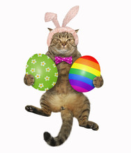The Cute Cat In Easter Bunny Ears And A Bow Tie Holds The Two Big Painted Eggs. White Background.