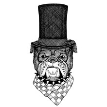 Wild Animal Wearing Top Hat, Cylinder. Hipster Dog, Bulldog