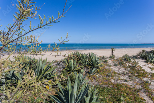 Fotografía  Sandy dunes in the mediterranean, Denia, Valencia, Spain