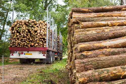 Valokuva  Truck and trailer loaded with pine tree trunks