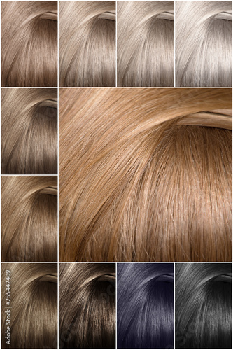 Color table for shades. Hair color palette with a wide range ...
