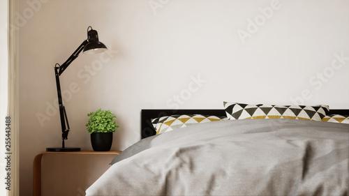 Vue 3d Chambre Avec Grand Lit Et Verrière + Dressing 06