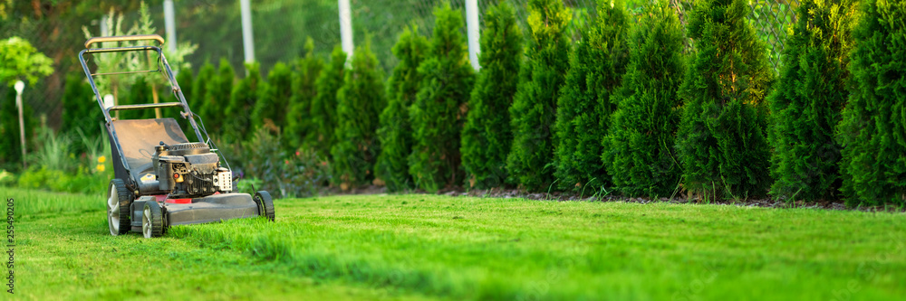 Fototapety, obrazy: Lawn mower cutting green grass