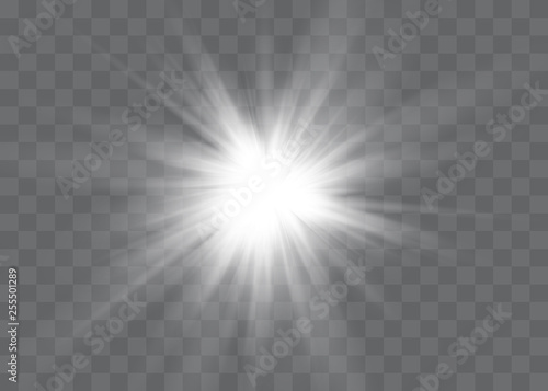 Obraz White glowing light explodes on a transparent background. Vector illustration of light decoration effect with ray. - fototapety do salonu