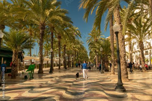 pedestrians in the busy esplanade of Spain, in Alicante