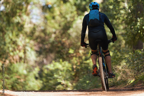 Mountain biking man riding on bike in summer mountains forest landscape Wallpaper Mural