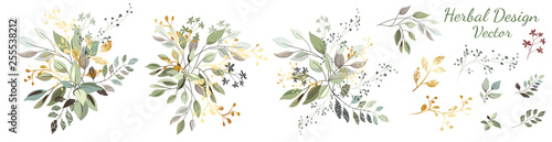Fototapety, obrazy: Twigs with gold and green leaves. Set: leaves, herbs, composition of gold and decorative elements.  Vector.