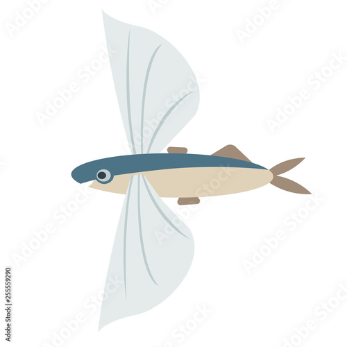 Fotomural flying fish flat color art illustration