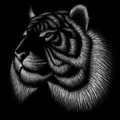 Tygrys logo Vector na tatuaż lub projekt koszulki lub odzieży wierzchniej. Tygrysy w stylu polowania drukowane na czarnym tle.