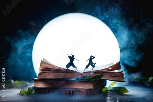 Plakaty do biblioteki an-open-book-with-two-ninja-warrior-silhouettes-fighting-in-full-moon-reader-imagination-and-writing-inspiration-concept-with-copy-space