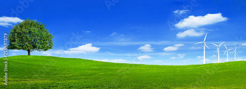 Montage in der Fensternische Dunkelblau Green summer landscape scenic view wallpaper. Beautiful wallpaper. Solitary tree on grassy hill and blue sky with clouds. Lonely tree springtime. Green planet earth. Photo stock.