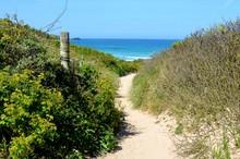 Beach Path To Fistral Beach, Cornwall