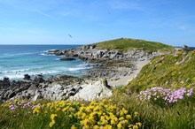 Towan Headland & Little Fistral Beach, Newquay, Cornwall