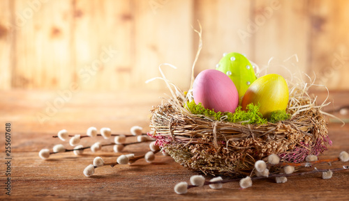 Photo  Easter composition with Easter eggs in nest and branches of pussy willows