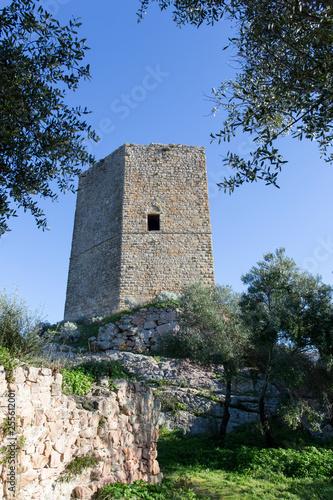 Fotografie, Obraz  casteldoria in Sardinia