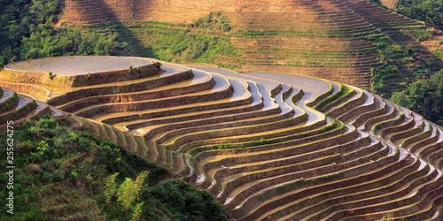 Fotobehang Rijstvelden Longsheng Rice Terraces, Longji Rice Terrace (Dragons Backbone) in Longsheng County - Guangxi Province, China. Layered Irrigated Terraces filled with water, new seasonal crop. Chinese Landscape