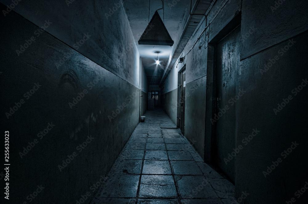 Ciemny korytarz. Mistyczne wnętrze ciemnego pustego korytarza, tunel w opuszczonym domu. Ciemny tajemniczy korytarz. Wnętrze opuszczonego domu, droga do piekła. <span>plik: #255633023 | autor: zef art</span>