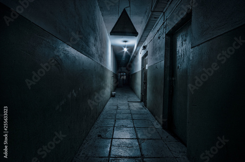 Fotografie, Tablou Dark corridor