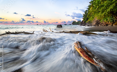 Long exposure of waves crashing against driftwood at sunset on the west coast of the Osa Peninsula, Costa Rica Canvas Print