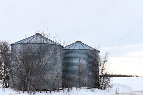 Grain Storage Bins - Buy this stock photo and explore similar images