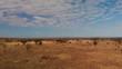 The savanna at Tsavo West, near the Lions Bluff lodge, Kenya. Aerial shots.