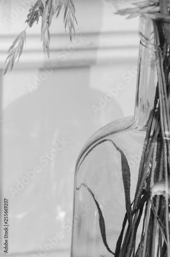 Czarno-białe zdjęcie, zoom na źdźbła trawy w szklanej butelce.