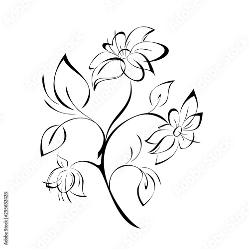 Fototapety, obrazy: decorative twig with flowers and leaves on a white background