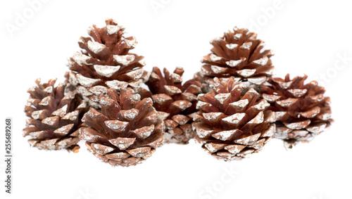 Fototapeta Fir cones, decorations for holidays, christmas background. obraz na płótnie