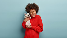 Waist Up Shot Of Glad Dark Skinned Young Female Holds Tightly Small Puppy, Laughs Sincerely, Rejoices Present From Friend, Likes Devoted Animals, Wears Red Jumper, Models Over Blue Background