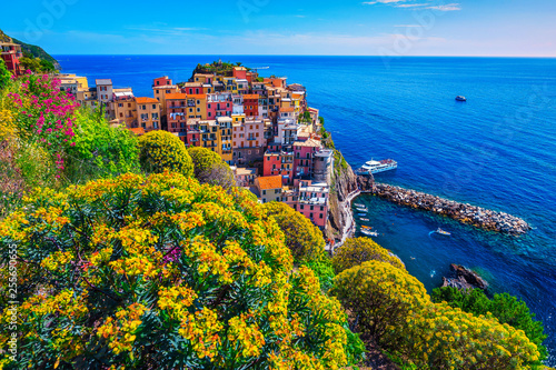 Staande foto Liguria Colorful flowers and touristic fishing village, Manarola, Cinque Terre, Italy