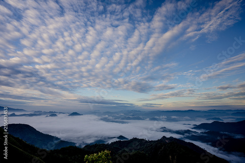 Valokuva  The sea of fog with forests and mountains valley ,beautiful in nature landscape