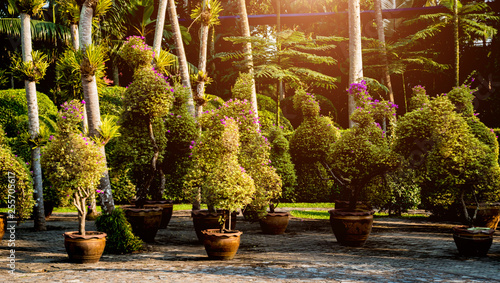 Deurstickers Bruin Luxury landscape design of the tropical garden. Beautiful view of tropical landscape