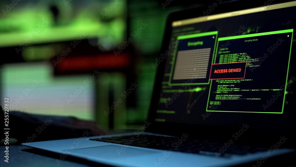 Fototapeta Message Access denied written on laptop screen, server blocking hacking attempt