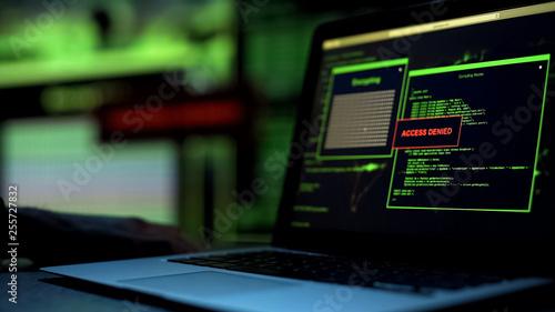 Message Access denied written on laptop screen, server blocking hacking attempt Wallpaper Mural