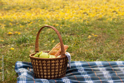 Fotografiet  Picnic basket with food on a blue plaid, against the background of greenery and foliage
