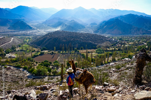 Girl standing with a lama at the quebrada de Humahuaca in the province of Jujuy, Argentina
