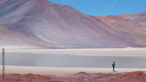 Fotografie, Obraz  girl walking at piedras rojas on the altiplano in Chile close to San Pedro de Atacama