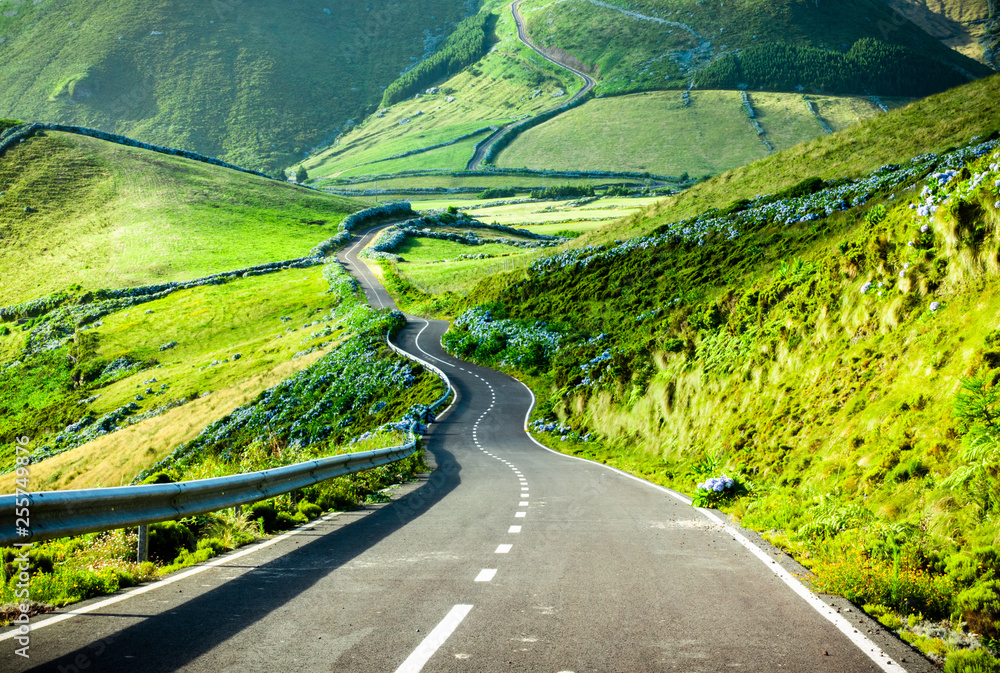 Fototapety, obrazy: Azores landscape: Endless curvy winding road through the hills of Flores island, the Azores, Portugal.